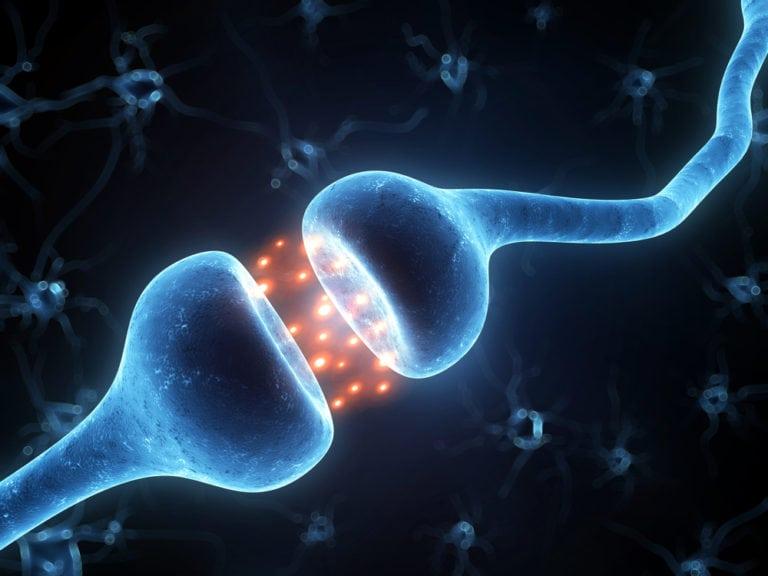 neurofeedback 3d